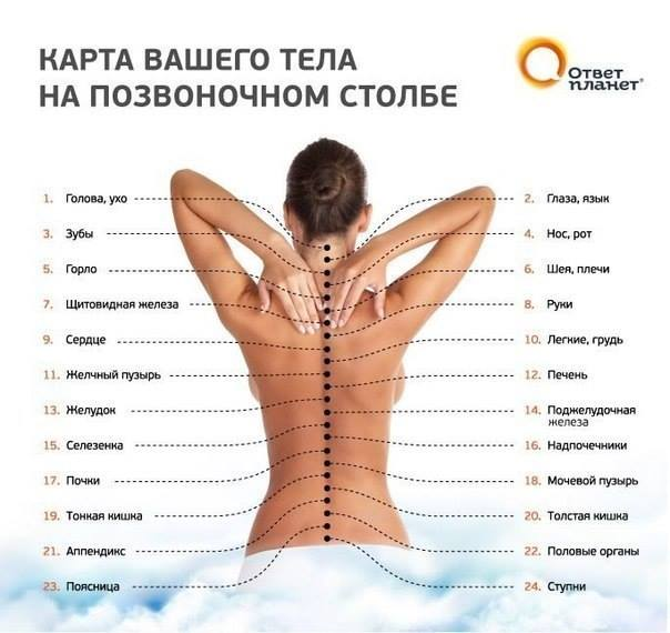 Карта на гръбначния стълб върху тялото Ви - оригинал на руски език