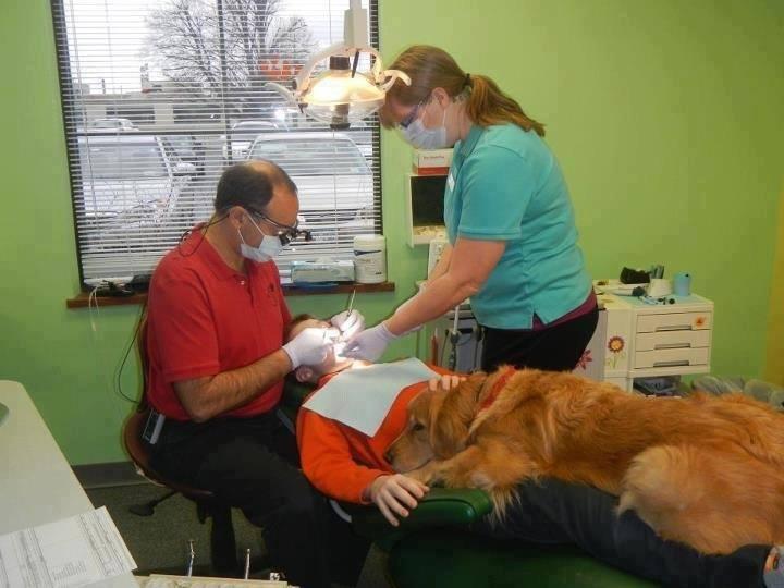 зъболекарят и кучето