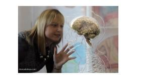 мозъкът какво не знаем