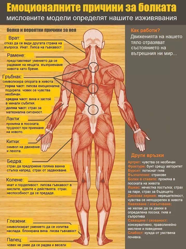 Причини за болестите емоции prichini za bolestite emocii