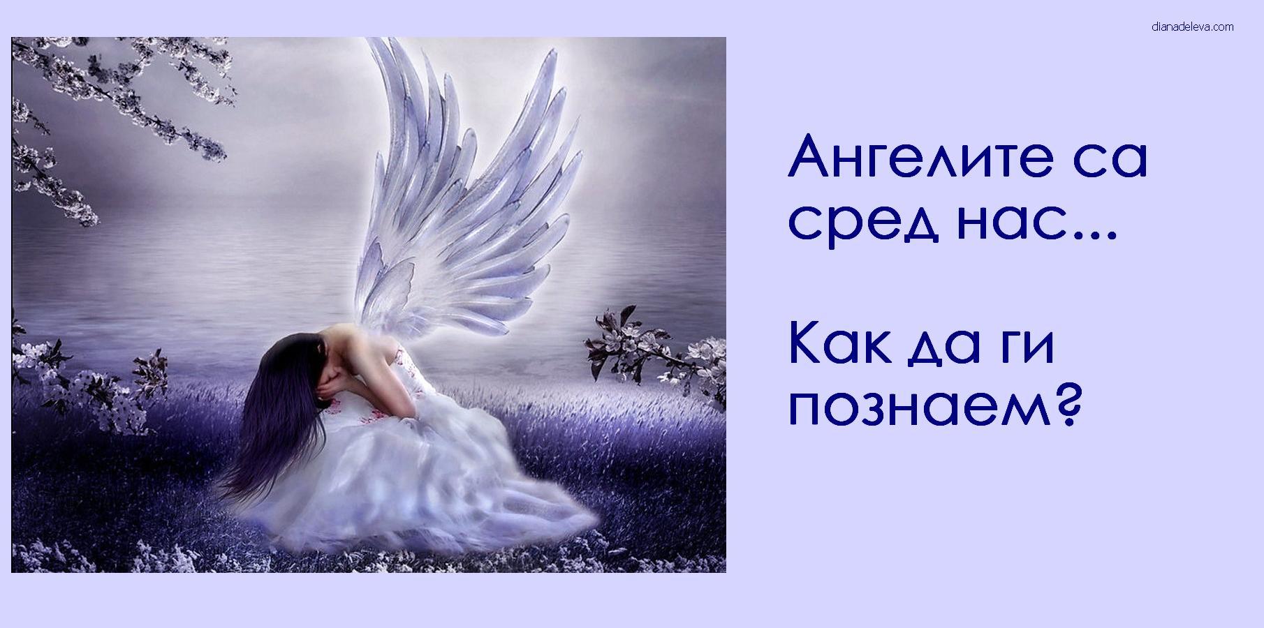 Ангели на земята са ред нас как да ги познаем Angeli na zemiata 8 sa sred nas kak da gi poznaem